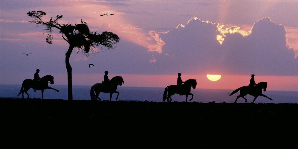 Equitacióm - Almacenes Antonio Guerrero Coín