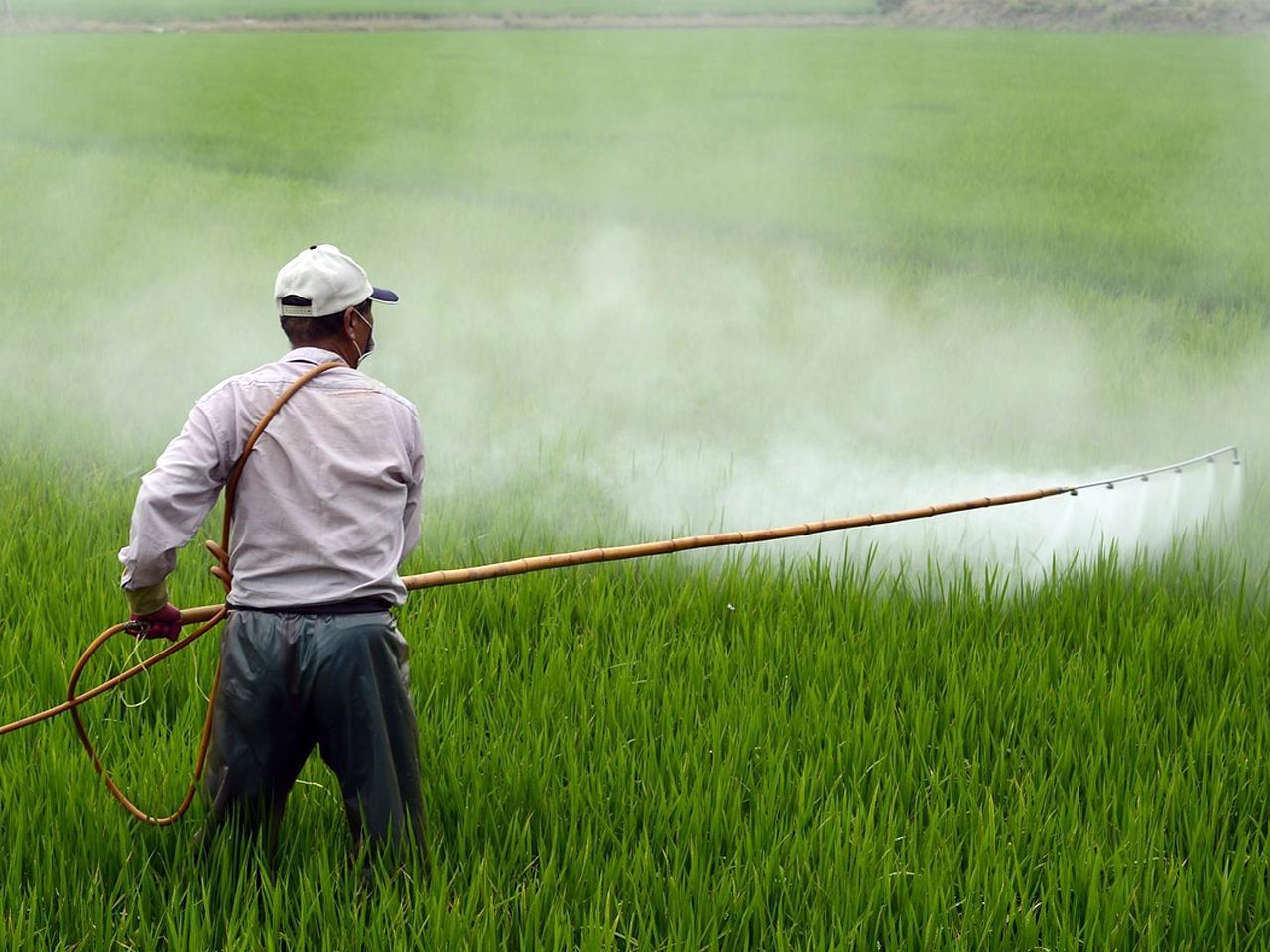 Productos Agrícolas / Productos fitosanitarios - Almacenes Antonio Guerrero