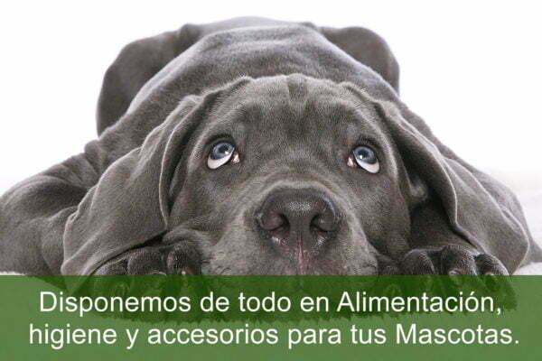 Todo Para Tus Mascotas