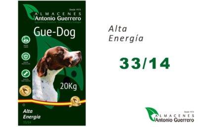 GUE-DOG_alta energía