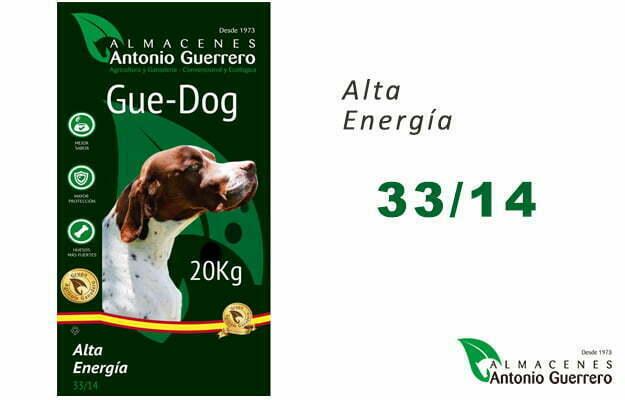GUE-DOG Alta Energía