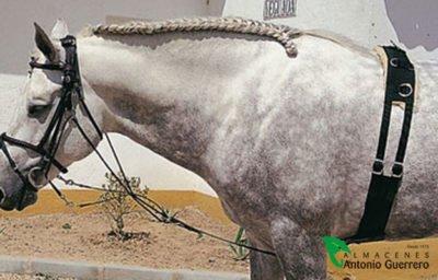 Gogue Cuero Castecus - Almacenes Antonio Guerrero