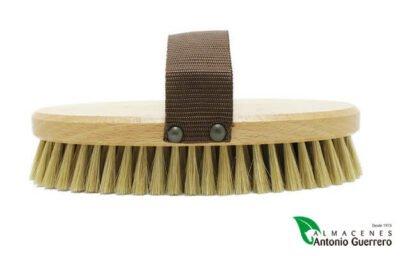 Cepillo Ganado Ovalado de Pelo Duro - Almacenes Antonio Guerrero